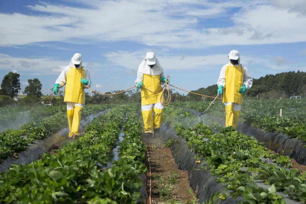 Millionen-Kampf um gefährliches Pestizid